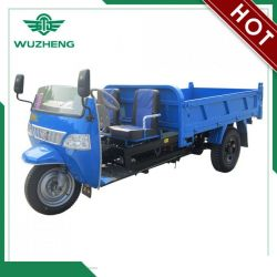 Waw Open Cargo Diesel Motorized 3-Wheel Tricycle From China