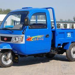 Wuzheng Tri-Wheel Vehicle with Cab