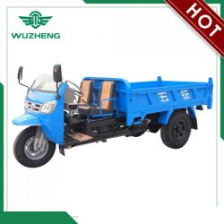 Waw Open Waw Diesel Motorized Cargo Tricycle for Sale From Chi