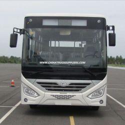 Sc6833 Showroom Front Look Bus