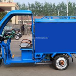 Tricycle with Closed Body of 800W Three Wheel Electro Tricycle