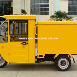 Hot Sale 800W Three Wheel Electro Tricycle for Express