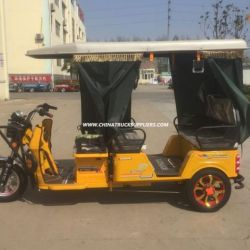 Environment Bicycal Four Passengers 850W Electric Trike Hot Sale