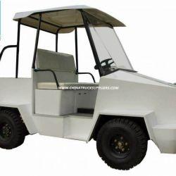 Electric Mini Van Tr